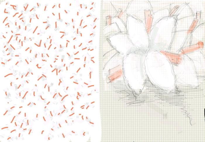 p white
