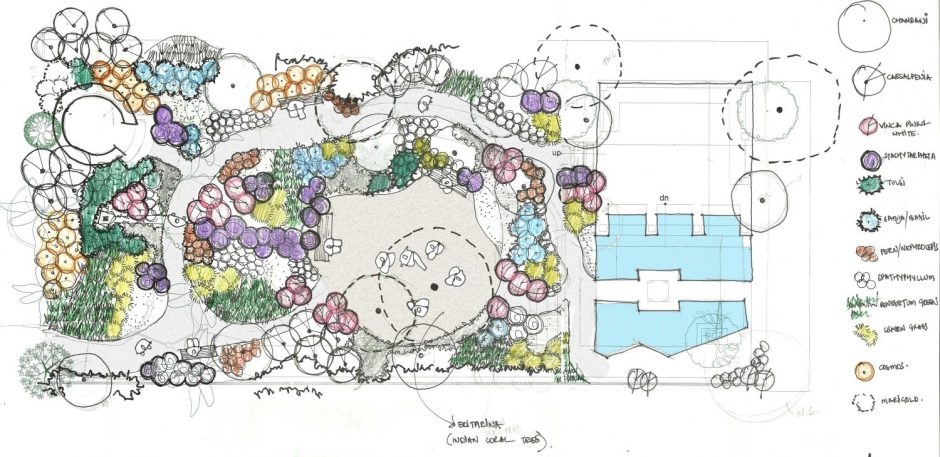 planting structure plan